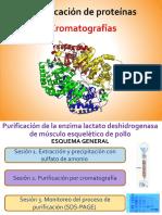 Cromatografia Para Purificación de Proteínas