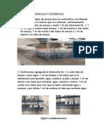 DESARROLLO Y EVIDENCIAS.docx