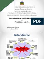 Aula Metodos Analiticos Em Bioquimica