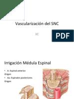 09 Vascularizacion SNC