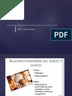 Generalidades fisiológicas de los sentidos químicos del gusto.pdf