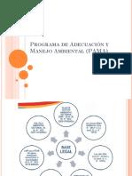 Programa de Adecuación y Manejo Ambiental (PAMA)