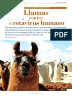 LLAMAS CONTRA EL ROTAVIRUS HUMANO.pdf