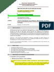Informe _flv 111