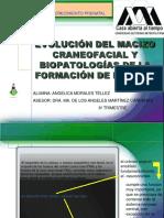 BIOPATOLOGIA.pdf