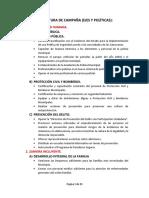 Estructura de Campaña Con Desarrollo