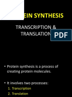 Microbiology Presentation - Protein Synthesis