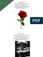Rosa de Hiroshima