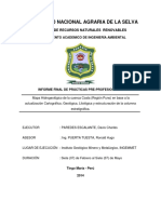 INFORME FINAL davis paredes MODIFICANDO.pdf