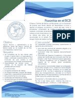 2017pasantias.pdf