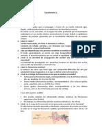 Cuestionario 1 - Ael.docx