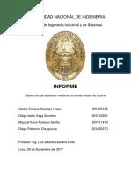 Informe Lescano