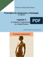 ch05 Sistema tegumentario Alumnos 2014.ppt