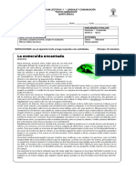 Guía n1.doc