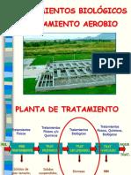 Tratamiento-Aerobio.ppt