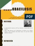 Necrobacilosis