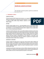 informe 10