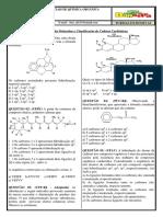 Lista 02 - Hibridização, Fórmula Molecular e Classificação de Cadeias Carbônicas.