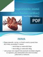 3.-Chirurgie-abdominale-1
