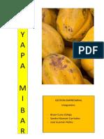 Gestion-Empresarial Yayapa Mibar