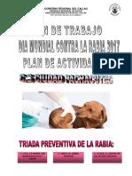 PLAN DE TRABAJO RABIA 2017.docx