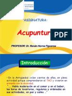 290648853-Acupuntura