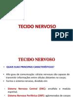 Aula 13 - Tecido Nervoso 1