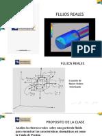 FLUJOS REALES.pdf