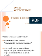 COURSE 1 WHAT IS ECONOMETRICS.ppt