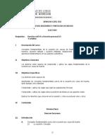 Programa Derecho Civil VIII Aprobado El 11-11-09