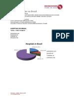 CASA Russa - Números Do Setor Hospitalar No Brasil - 201805