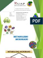 Exposición de Microbiología (1)