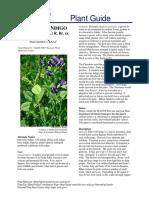 Wild Blue Indigo - USDA Plant Guide