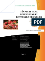 167805942 2º Informe Carnes