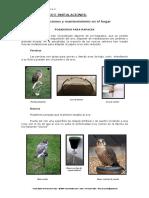 6.-Equipo-básico-e-instalaciones..pdf
