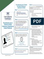 Procedimiento Cedula Prof Fed y Duplicado Web Url 0