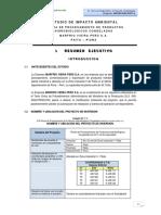 1_Resumen_Ejecutivo EIA.pdf