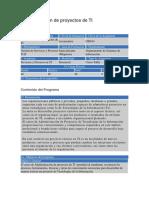 Programa Administracion de Proyectos de Ti