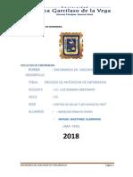 PAE CRED CORREGIDO.pdf