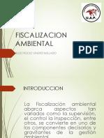 Fiscalizacion Ambiental en El Pais