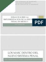 Ensayos Sobre La Implementación de La Reforma Penal