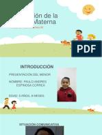 Adquisición de la Lengua Materna trabajo copia f.pptx