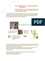 Elaboracion de Biocombustible a Partir Dedesechos Organicos