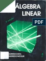 Matrizes Sistemas Determinantes Boldrini.pdf