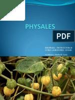 PHYSALES.pdf