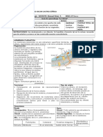 Guía de aprendizaje - La célula- 8vo.doc
