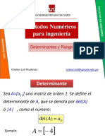 2 Determinantes y Rango Ppt