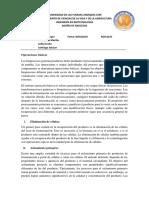 Informe Operaciones Básicas