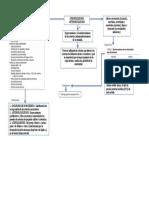 mapa de aterosclerosis.docx