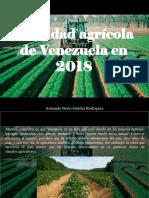 Armando Nerio Guédez Rodríguez - Realidad Agrícola de Venezuela en 2018